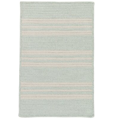 Neponset Hand-Woven Green Indoor/Outdoor Area Rug Rug Size: 5 x 7