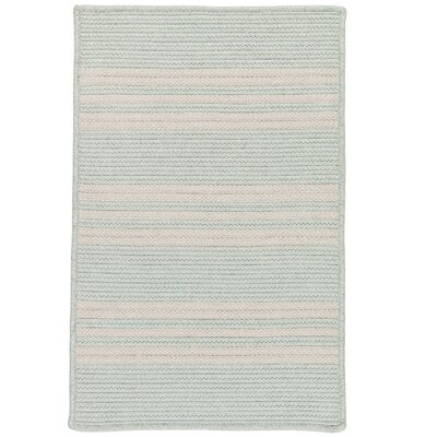 Neponset Hand-Woven Green Indoor/Outdoor Area Rug Rug Size: 6 x 9
