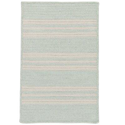 Neponset Hand-Woven Green Indoor/Outdoor Area Rug Rug Size: 9 x 12