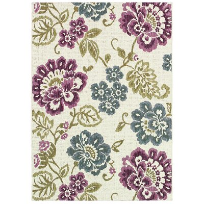 Dimmick Indoor/Outdoor Area Rug Rug Size: 53 x 76
