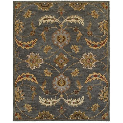 Dakota Hand-crafted Gray Area Rug Rug Size: 5' x 7'9