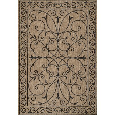 Bradford Brown Warbray Indoor/Outdoor Area Rug Rug Size: 9 x 12