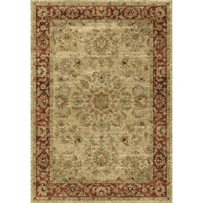 Decatur Area Rug Rug Size: 53 x 76