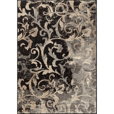 Decatur Area Rug Rug Size: 5'3 x 7'6