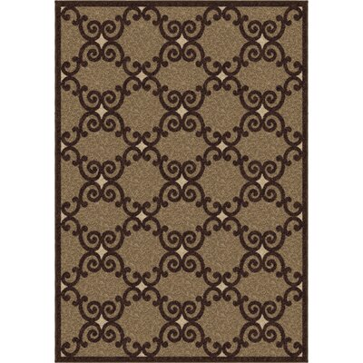 Plaines Brown Area Rug Rug Size: 53 x 76