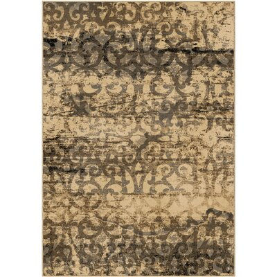 Coleta Beige Area Rug Rug Size: 5'3 x 7'6