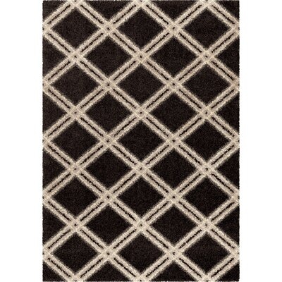 Menominee Shag Black/Ivory Area Rug Rug Size: 53 x 76