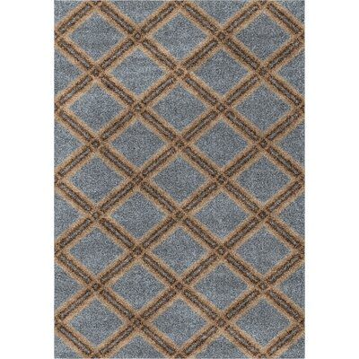 Menominee Shag Blue Area Rug Rug Size: 710 x 1010