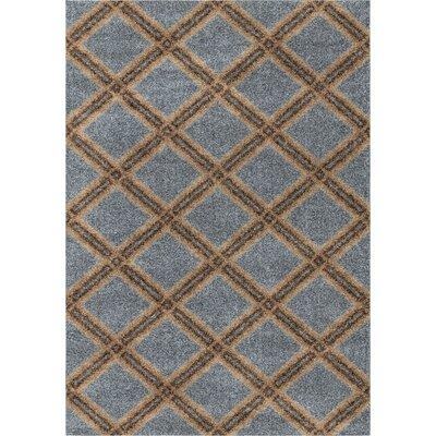 Menominee Shag Blue Area Rug Rug Size: 53 x 76