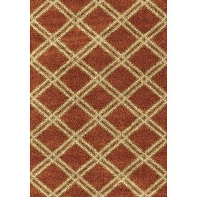 Menominee Shag Burnt Orange Area Rug Rug Size: 53 x 76
