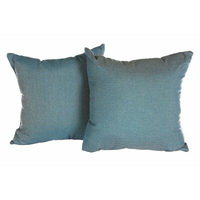 Annabelle Outdoor Throw Pillow Color: Cast Lagoon