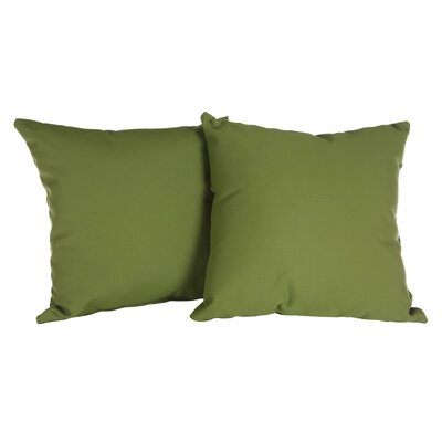 Annabelle Outdoor Throw Pillow Color: Canvas Palm