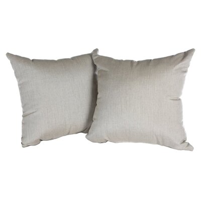 Annabelle Outdoor Throw Pillow Color: Cast Ash