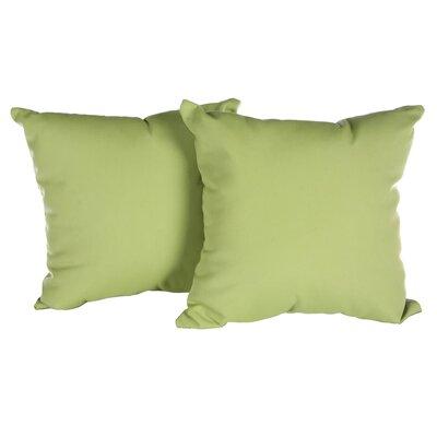 Annabelle Outdoor Throw Pillow Color: Canvas Gingko