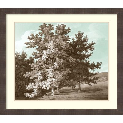 Serene Trees I Framed Wall Art