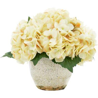Creamy Beige Hydrangea Bouquet in Rustic Pot