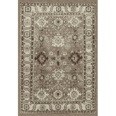 Asheville Taupe Area Rug Rug Size: Rectangle 9 x 12