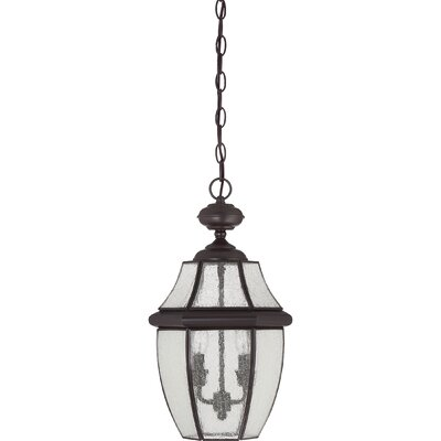 Saddler 2-Light Outdoor Hanging Lantern