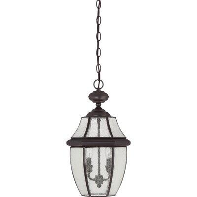 Saddler 2-Light Outdoor Hanging Lantern