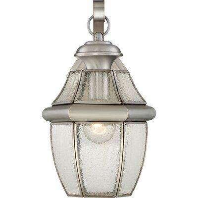 Saddler 1-Light Outdoor Wall Lantern Size: 14 H x 9 W x 8 D