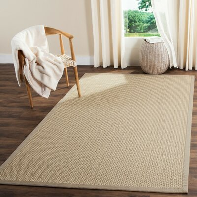 Natural Fiber Light Gray Area Rug Rug Size: 4 x 6