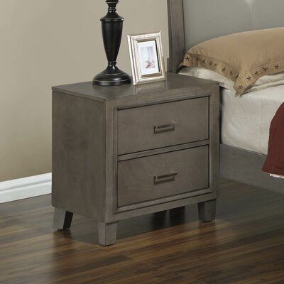 Hoytville 2 Drawer Nightstand Color: Gray