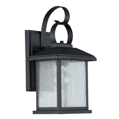 Gravesham 1-Light Outdoor Wall Sconce Finish: Black