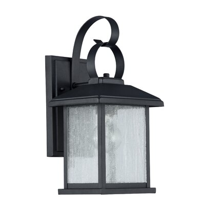 Gravesham 1-Light Outdoor Wall Sconce Finish: Oil Rubbed Bronze