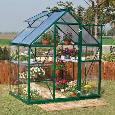 Shearson 6.07 Ft. W x 4.29 Ft. D Greenhouse Frame Finish: Green
