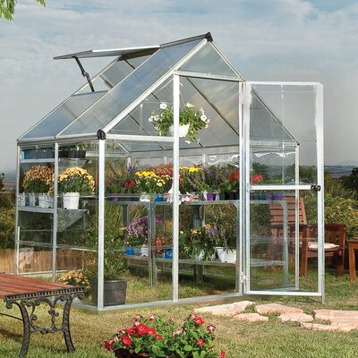 Shearson 6.07 Ft. W x 4.29 Ft. D Greenhouse Frame Finish: Silver