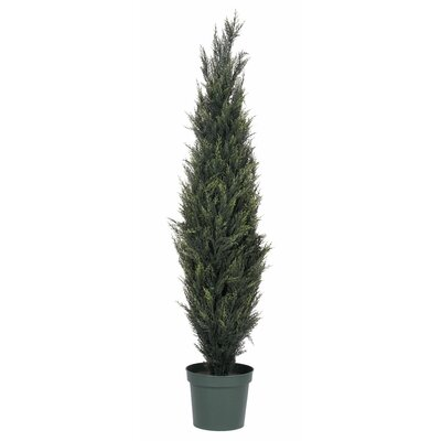 Plastic Pond Cypress Tree in Pot