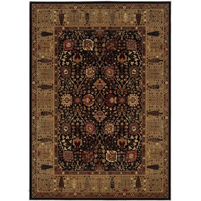 Edwards Black/Brown Area Rug Rug Size: 4'6 x 6'6