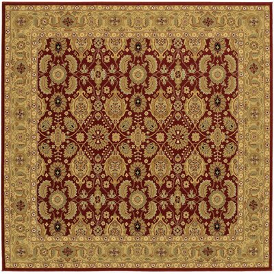 Edwards Red Area Rug Rug Size: Square 710