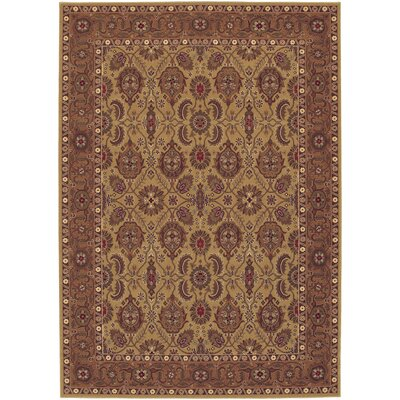 Edwards Hazelnut Area Rug Rug Size: 66 x 910