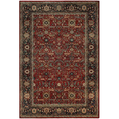 Cloverfield Rust/Navy Area Rug Rug Size: Rectangle 53 x 76