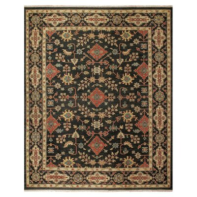 Carrickfergus Knotted Wool Black/Brown Floral Area Rug Rug Size: Rectangle 2 x 3