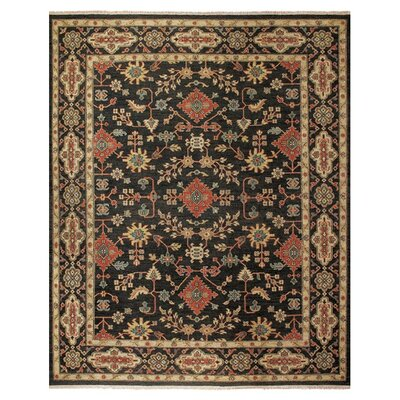 Carrickfergus Black/Brown Floral Area Rug Rug Size: 79 x 99