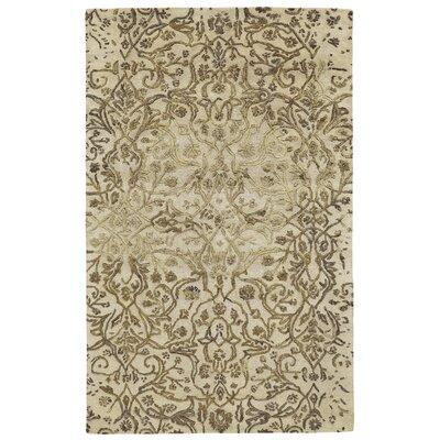 Southbury Ivory/Gold Area Rug Rug Size: 36 x 56