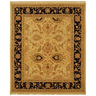 Linwood Gold/Black Area Rug Rug Size: 4 x 6