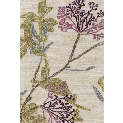 Bumgardner Hand-Tufted Beige Area Rug Rug Size: Rectangle 5' x 7'6