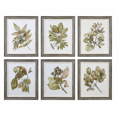 Seedlings 6 Piece Framed Graphic Art Set