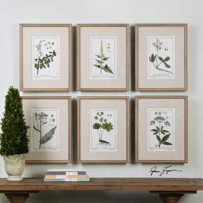 Floral Botanical Study 6 Piece Framed Graphic Art Set