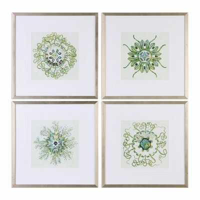 Organic Symbols 4 Piece Framed Graphic Art Set