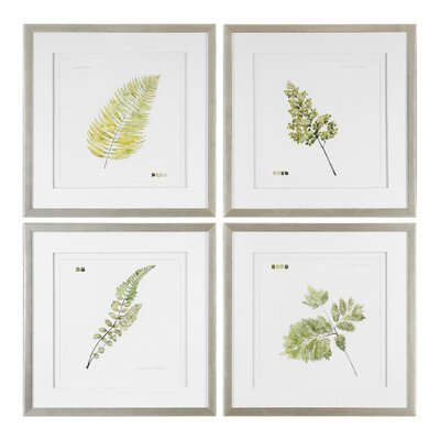 Leaf Study 4 Piece Framed Graphic Art Set