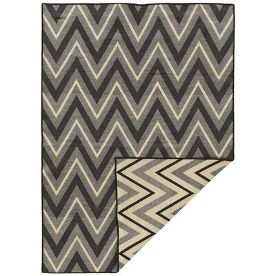 Corvally Hand-Woven Black/Gray Area Rug