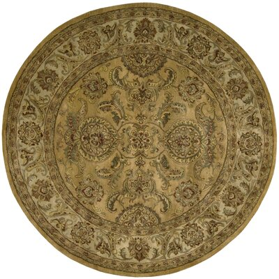 Delaware Gold Area Rug Rug Size: Round 6