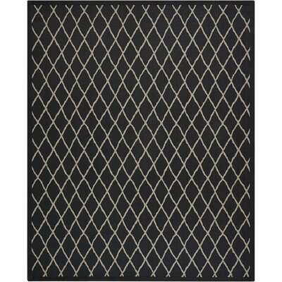Northridge Black Pearl Indoor/Outdoor Area Rug Rug Size: Rectangle 8 x 10