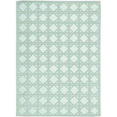 Oxford Hand-Woven Aqua Area Rug Rug Size: 56 x 76