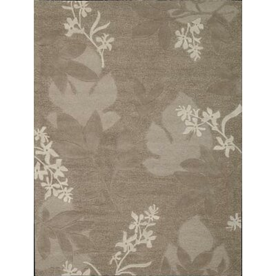 Peterson Hand-Tufted Chocolate Area Rug Rug Size: 36 x 56