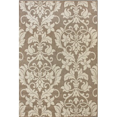 Brassiewood Brown Outdoor Area Rug Rug Size: Rectangle 9 x 12